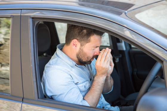 Man driving sneezes due to hayfever